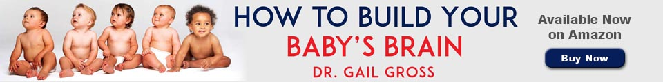 How to Build Your Babys Brain Custom Website Banner for book promo